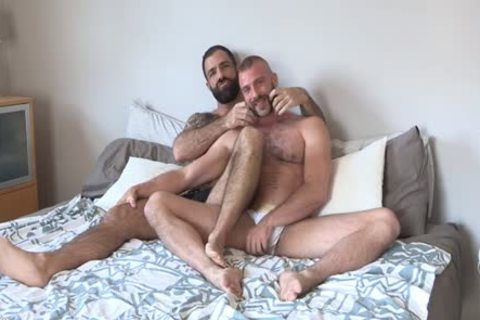 Two bushy Bearded dudes Having sweet enjoyment